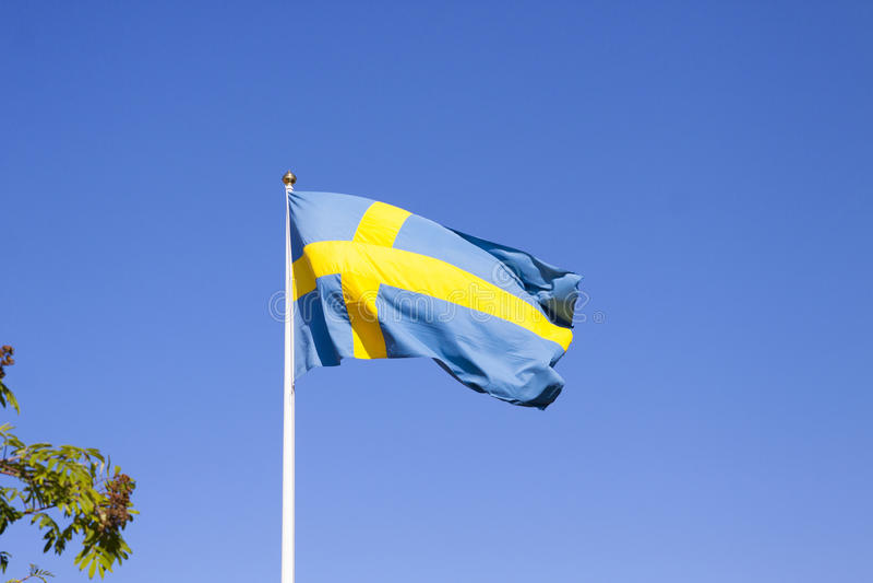 szwedzi bandery obrazy royalty free