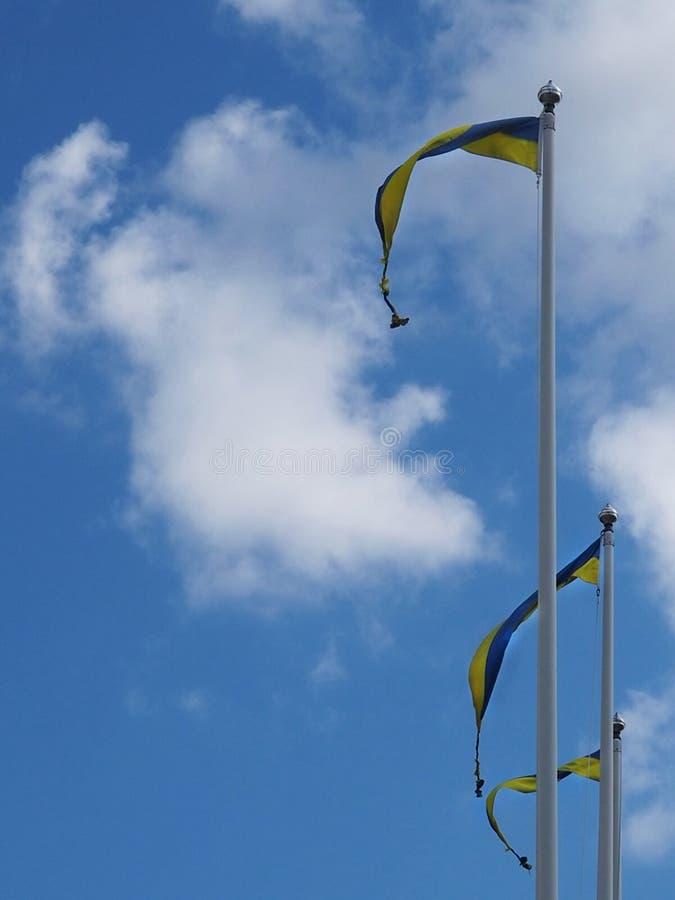 Szwedzi flagi w niebie fotografia royalty free