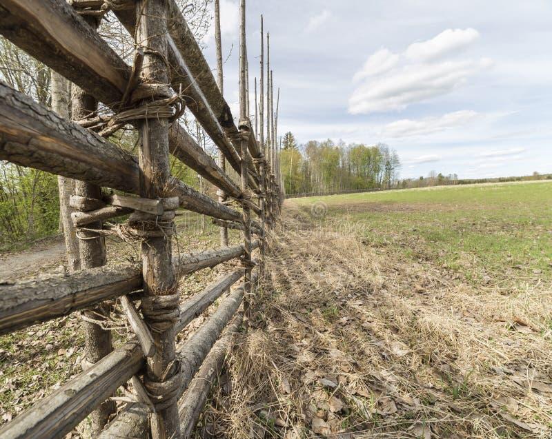 Szwedzi gospodarstwa rolnego ogrodzenie polem obraz royalty free