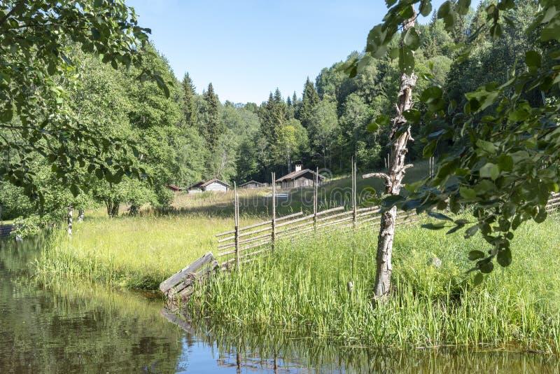 Szwedzi kształtują teren z tradycyjnym wzgórza gospodarstwem rolnym zdjęcia royalty free