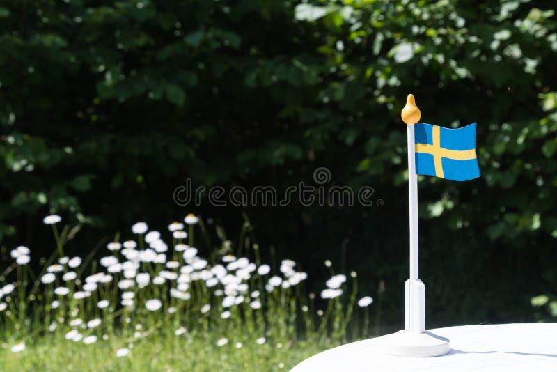 Szwedzi miniatury flaga fotografia royalty free