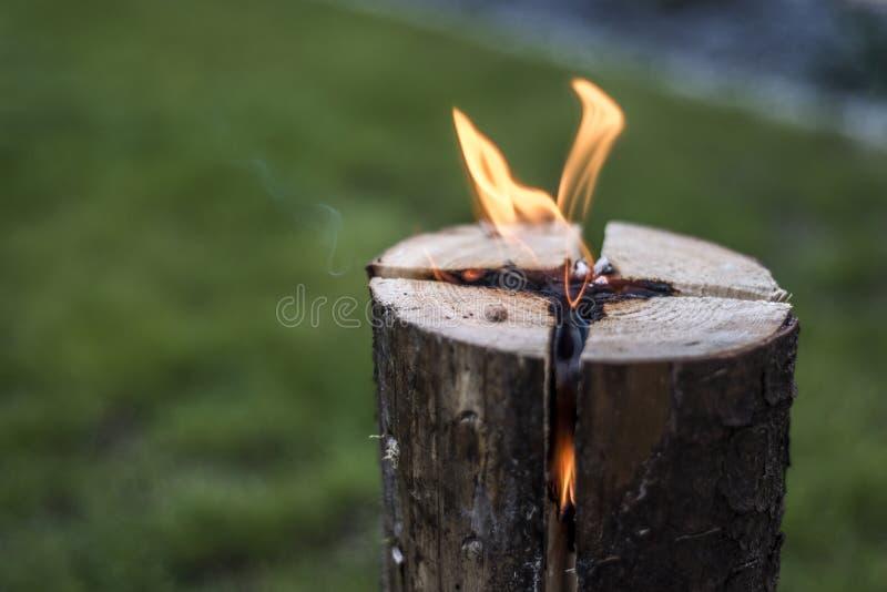Szwedzi podkładają ogień pożarniczego płonącego karcz na talerzu dla odpoczynku lub gotować karmowego chłodu nastrój zdjęcia stock