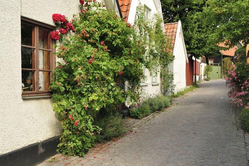 Szwedzki budynki mieszkalne fotografia royalty free