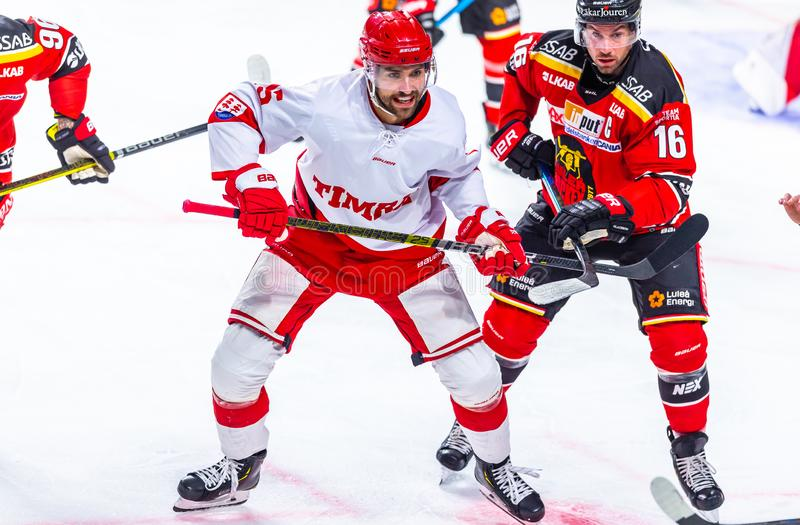 Szwedzki liga hokejowa SHL, Lulea hokej vs Timra IK - artykuł wstępny 2-0 Lulea obraz stock