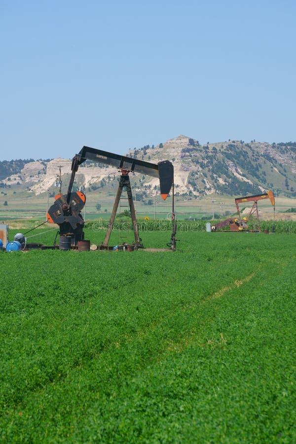 Szyb naftowy pompuje w wiejskim Nebraska polu zdjęcie stock