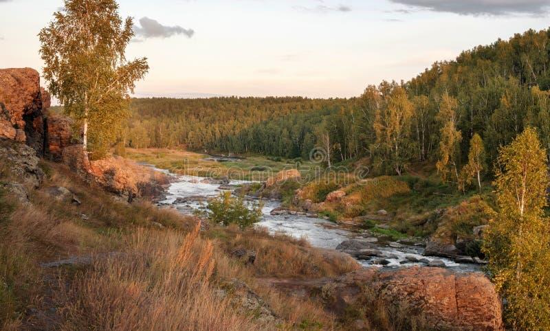 Szybki lasowy rzeczny bieg wśród kamiennych banków, Rosja Ural obraz royalty free
