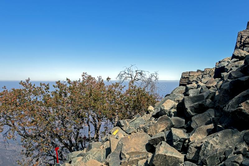 Szyldowa poczta na wędrówce losu angeles Campana park narodowy w środkowym Chile, Ameryka Południowa fotografia royalty free