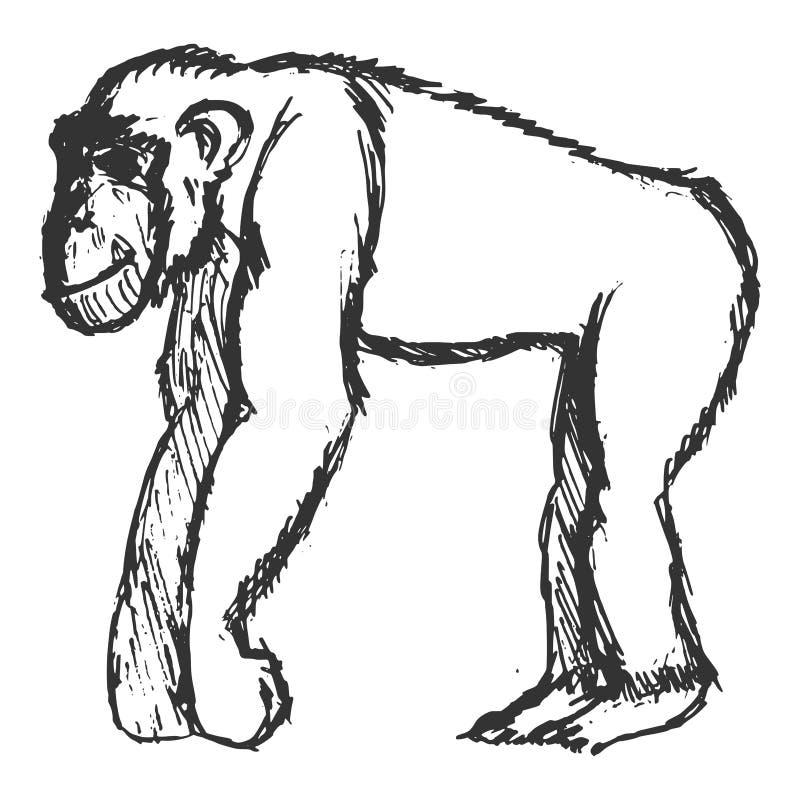 szympans royalty ilustracja