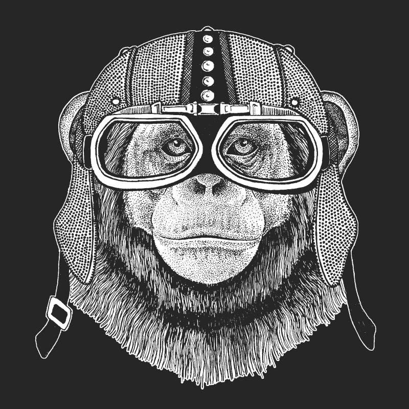 Szympans, Małpi rocznika motocyklu hemlet Retro stylowa ilustracja z zwierzęcym rowerzystą dla dzieci, dzieciaki odziewa, t ilustracja wektor