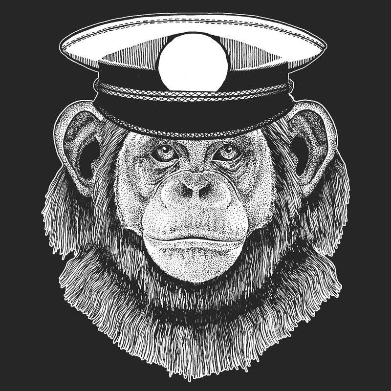 Szympans, Małpi Wektorowy druk dla dzieci Capitan, pirata zwierzę Odważny żeglarz Projekt dla dziecina, szkoła dzieciaki royalty ilustracja
