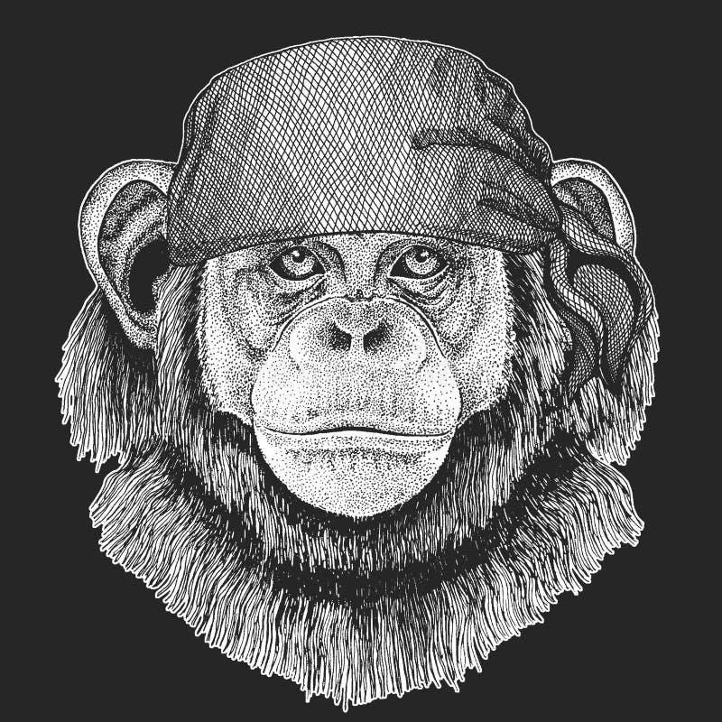 Szympansa Małpi Chłodno pirat, żeglarz, seawolf, żeglarz, rowerzysty zwierzę dla tatuażu, koszulka, emblemat, odznaka, logo, łata ilustracja wektor