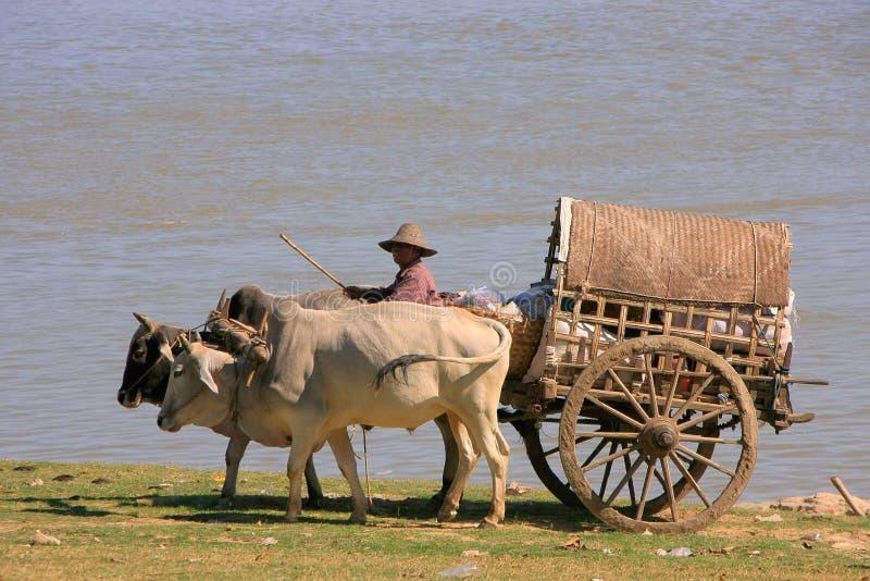 Táxi do turista em Mingun, Mandalay, Myanmar foto de stock