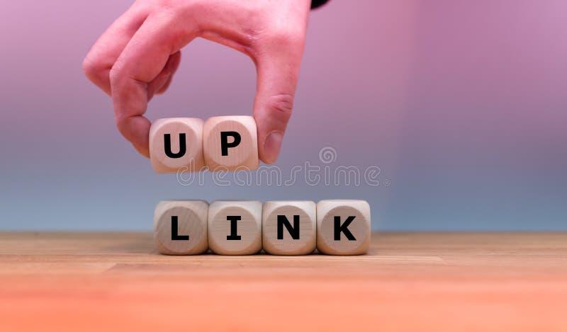 Tärningen bildar ordet 'UPP SAMMANLÄNKNING ', royaltyfria bilder