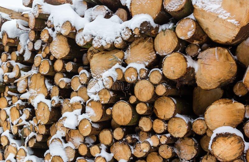 Täckt Snow loggar royaltyfria foton