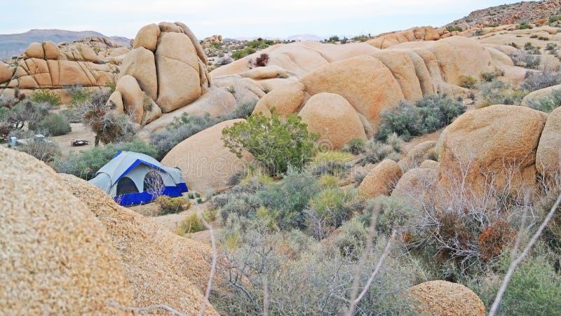 Tält som campar i Joshua Tree National Park - panorama arkivbilder