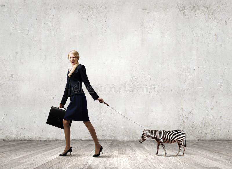 Tämja ett djur arkivfoto