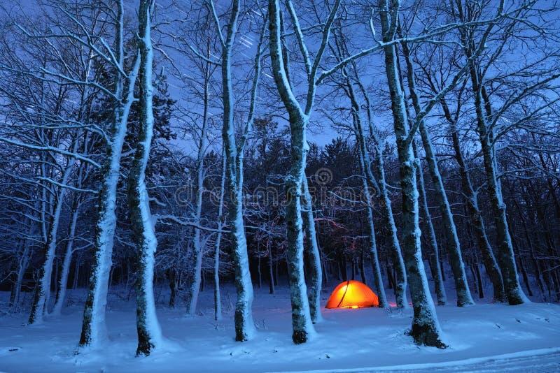Tända tältet i snöig trän av Nebrodi parkera, Sicilien arkivfoton