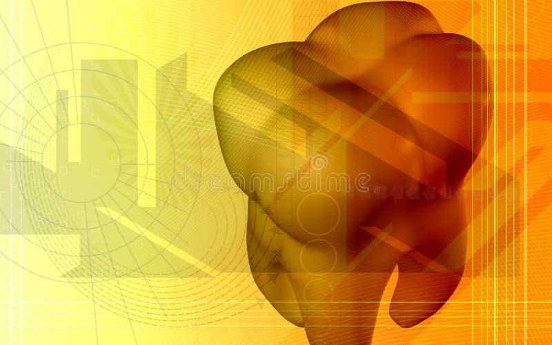 tänder royaltyfri illustrationer