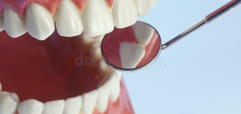 Tänder och tandläkare Mirror royaltyfri fotografi