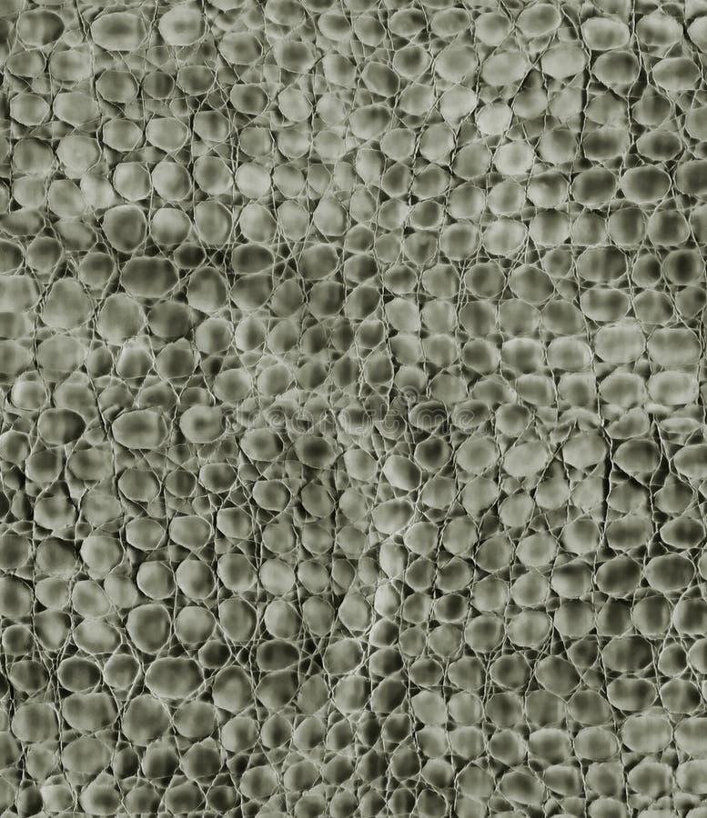 Tät Läderormtextur Upp Arkivfoto