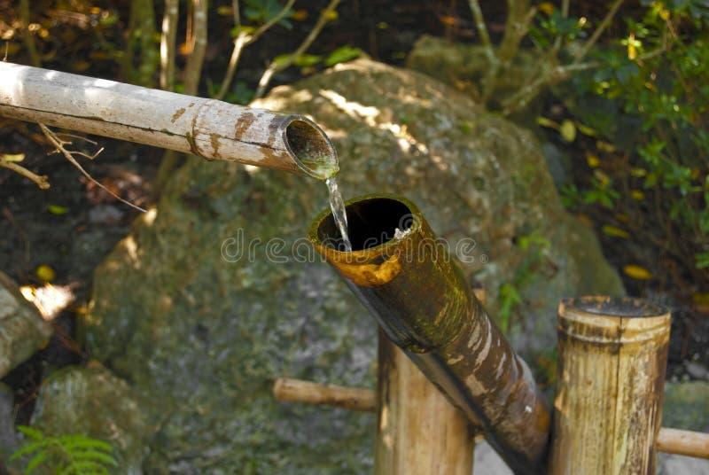 tät springbrunn för bambu arkivfoton