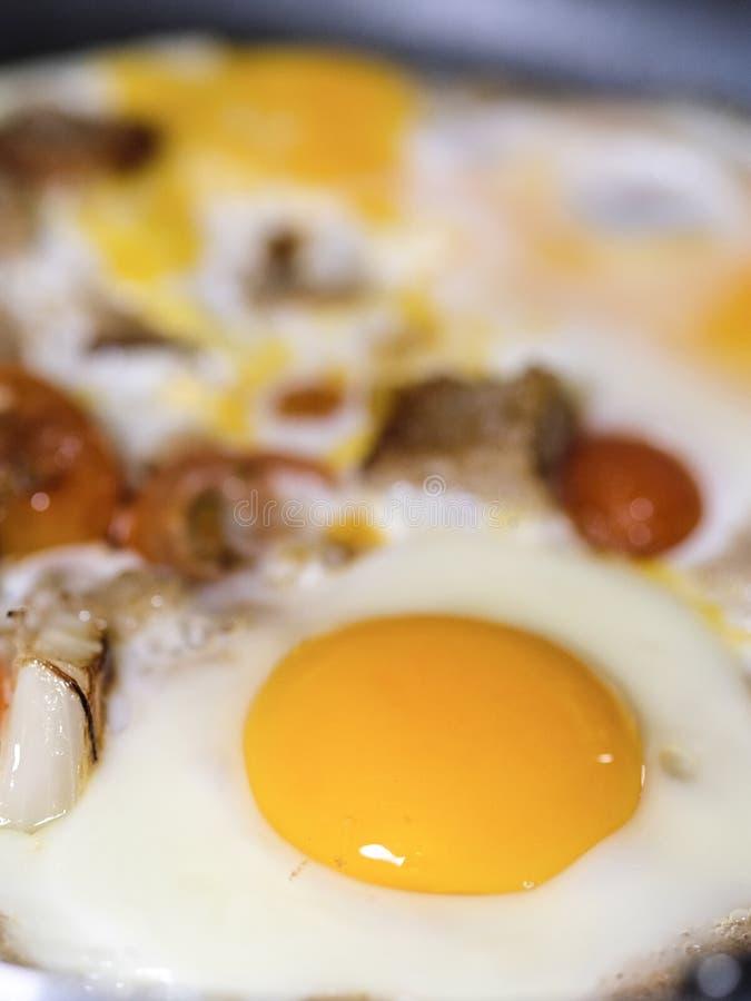 täta ägg som stekas upp arkivbild