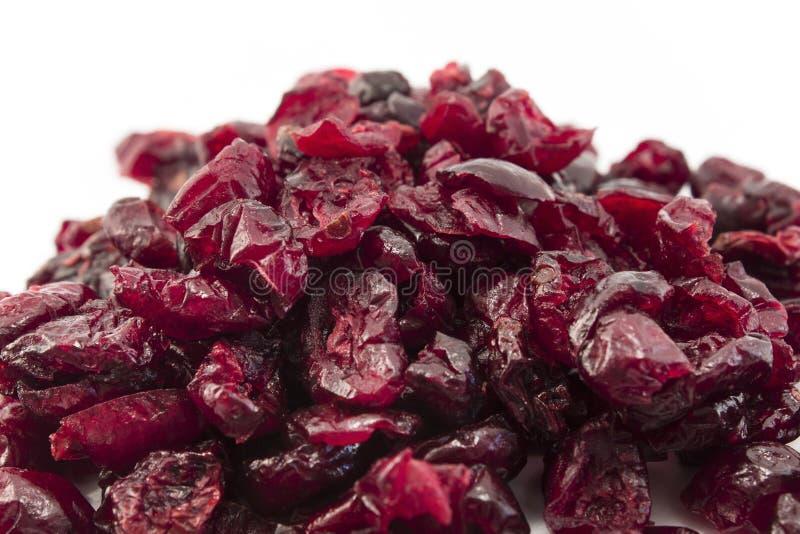 täta cranberries som torkas upp royaltyfri foto