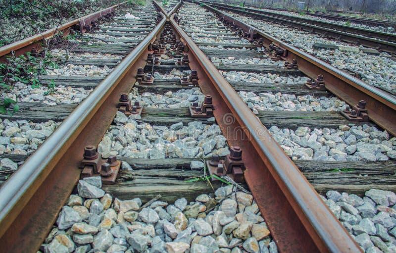 täta daglinjer järnväg spåriner upp två royaltyfri foto