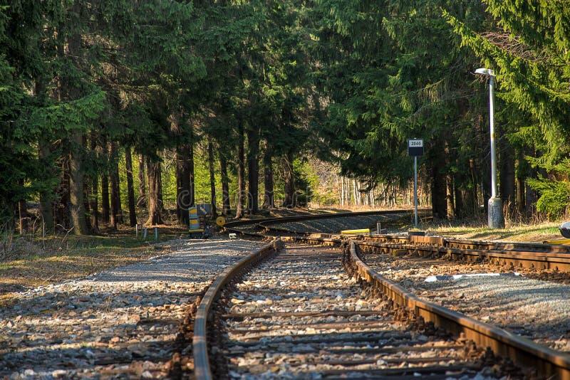täta daglinjer järnväg spåriner upp två Deltagande på stänger Konstruktion av järnvägsspår Järnväg infrastruktur soligt väder arkivbild