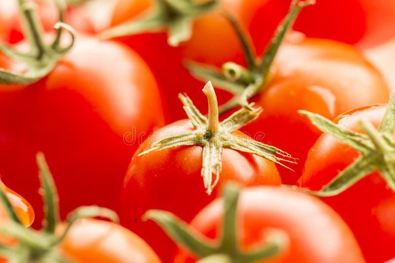 täta tomater för Cherry upp royaltyfri bild