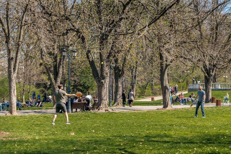 Tätigkeit im Park stockfoto