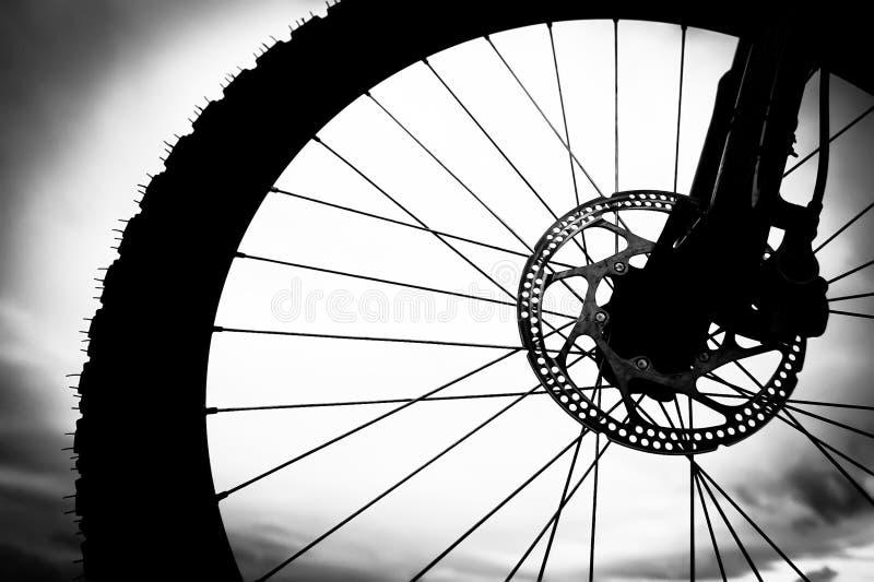 tätt övre hjul för cykel royaltyfria bilder