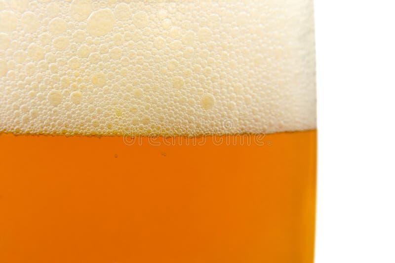 tätt exponeringsglas för öl upp royaltyfri foto