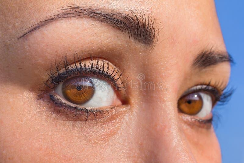 Tätt upp två färgade mandeln ögon i kvinnlig framsida arkivfoton