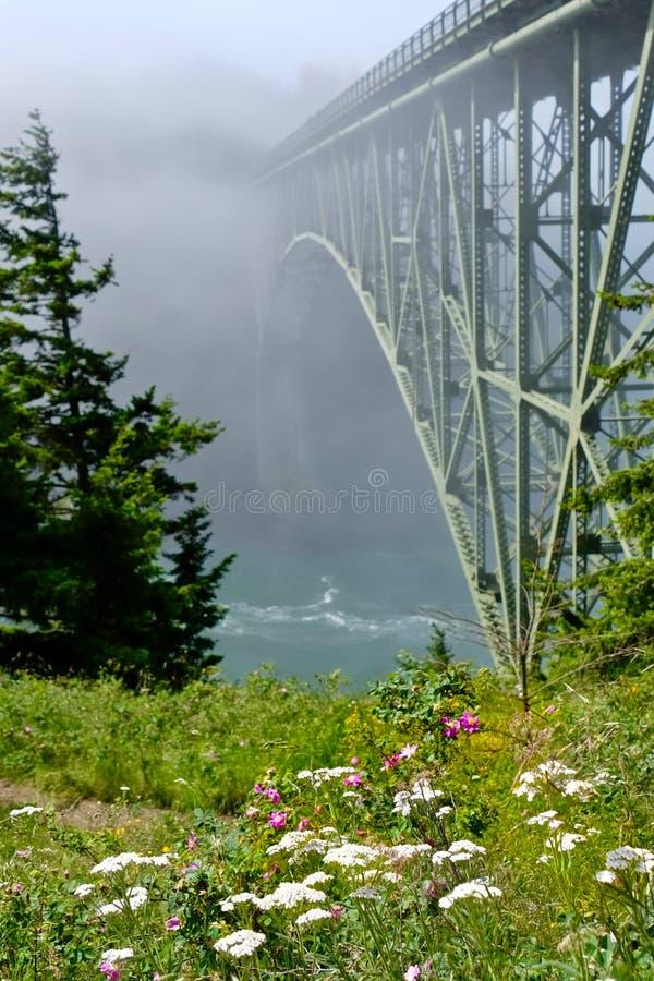 Täuschungs-Durchlauf-Brücke im Nebel und in den Wildflowers lizenzfreies stockbild