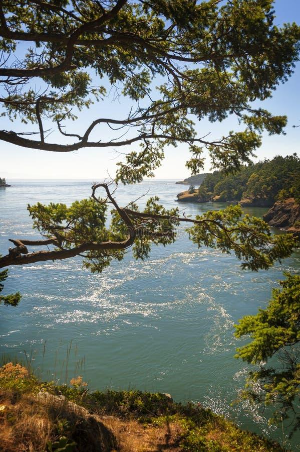 Täuschungs-Durchlauf-Nationalpark, Washington lizenzfreie stockfotos