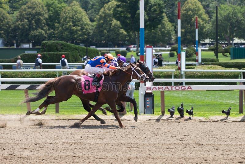 Tävlings- handling från drottningen av det amerikanska loppet Trac royaltyfri foto