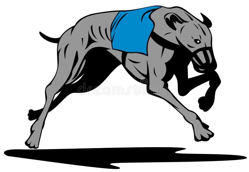 tävlings- vinthund vektor illustrationer