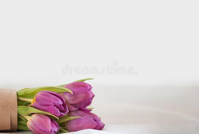 tła bukieta menchii tulipany biały zdjęcia stock