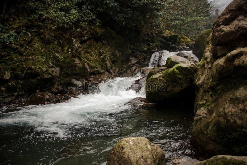 Tło woda dzika moutain rzeka spada od mech zakrywających kamieni obrazy stock