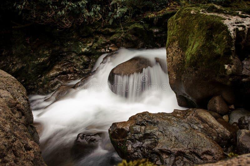 Tło woda dzika moutain rzeka spada od skały fotografia royalty free