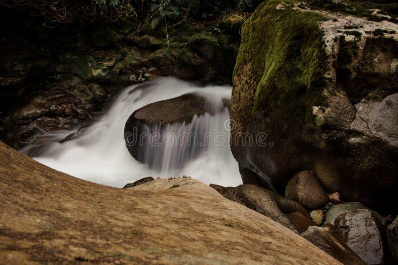 Tło woda spada od mech zakrywał kamień pod luksusowym ulistnieniem fotografia royalty free