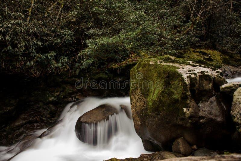 Tło woda spada od skały pod luksusowym ulistnieniem zdjęcie royalty free