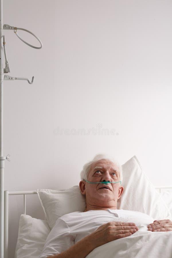 Tålmodigt stirra på sjukhustaket fotografering för bildbyråer
