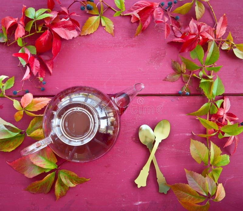 Tè caldo in autunno immagini stock libere da diritti