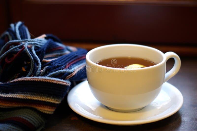 Tè caldo con la sciarpa fotografia stock libera da diritti