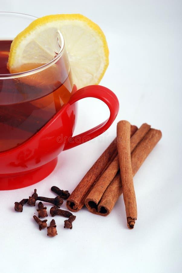 Tè caldo con le spezie fotografie stock libere da diritti