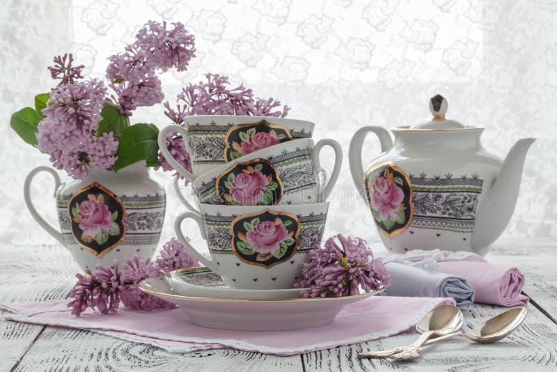 Tè caldo fresco di sambuco con i più vecchi fiori e foglie immagine stock libera da diritti