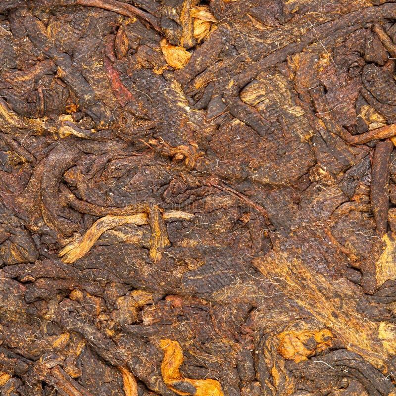 Tè cinese urgente del puer immagine stock libera da diritti