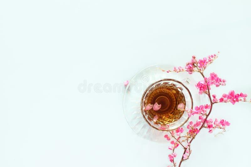 Tè con aroma e fiori rosa sulla molla fotografia stock